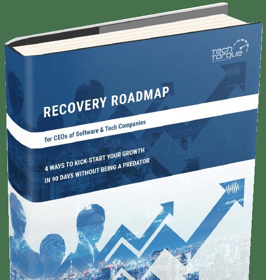 Recovery Roadmap 1 - Recovery Roadmap Success