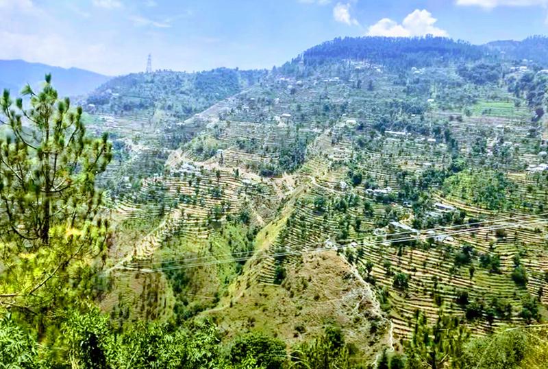 BLOG HIMALAYAS PT2 VIEW - Business Lessons from A Rickshaw Trek Across the Himalayas - Part 2